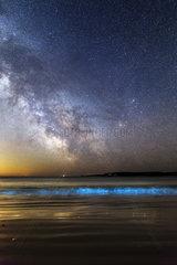 Milky Way and phosporescent plankton - Ile d'Houat France