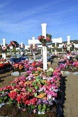 Denmark. Greenland. West coast. Disko Island. Cemetery of the village of Qeqertarsuaq.