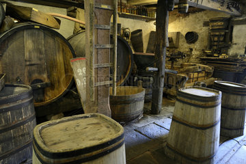 Cave Vineyard - Maison du Val de Villé Alsace France