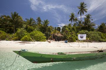 WWF team on Koon Island - Maluku Indonesia