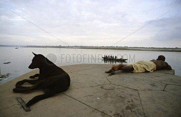 Dog and man lying beside the Ganges Vârânaçî India