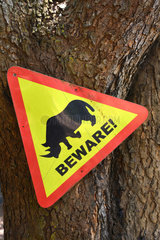 Traffic sign of the presence of Rhinoceros - Ziwa Uganda