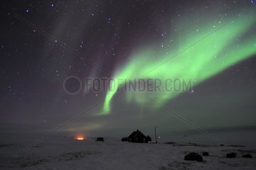 Aurora Borealis above the village of Cap Hope Greenland