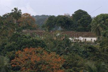 Roça Porto Real Island of Principle Sao Tome and Principe