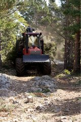 Tractor carrying cut wood at Mont Ventoux France