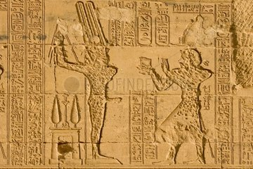 Hammering of the phraraonic representations Egypt