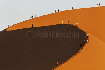 Tourist climbing Dune 45 in the Namib Desert. This is probably the worlds most photographed and climbed dune. In the evening. Namib-Naukluft National Park  Namibia.