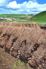 Drying yak dung - Tibet China