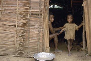 Pygmies Camp of gold washing Reserves of Minkebe Gabon