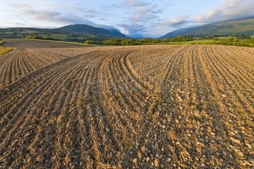 Field prepared for sowing - Genevois France
