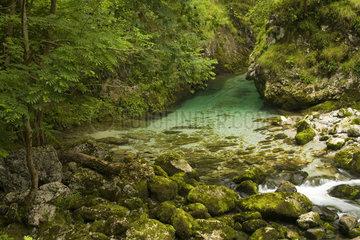 Cares village - Picos de Europa Asturias Spain