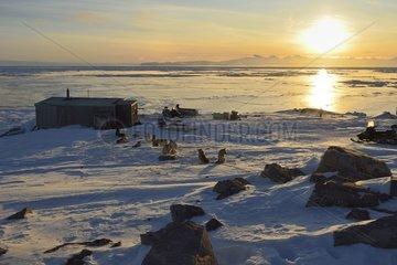 Hunting camp in Unarteq  Greenland  February 2016