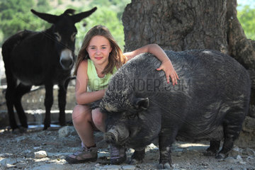 Girl stroking a Pig and Donkey
