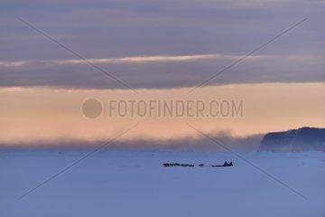 Inuit hunter in the Scoresbysund  february  Igterajivit distric  East Greenland