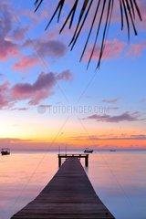 Pontoon and sunset paradise  the island of Mo'orea  French Polynesia