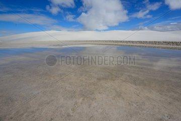 Gypsum Desert after rain - White Sands New Mexico