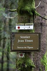 Source of the Ognon in the Domaniale Forest of Saint-Antoine  Ballon de Servance  Vosges  France