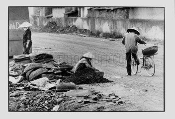 Gleaners of coal at the edge of the way Hongai Vietnam