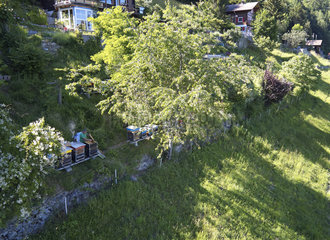 Beekeeping - Beekeeping-Mountain apiary in Switzerland: Aerial view of Jean-Andre Pellissier's chalet apiary near Martigny in Switzerland. Monitor-breeder of queen bees of the apis mellifera carnica subspecies  Jean-Andre is very active in the Societe Romande d?Apiculture and participates in breeding programmes with the beekeeping society of Martigny.