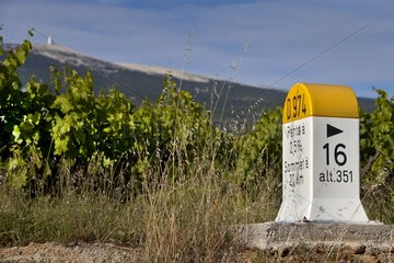 Point Road and Mont Ventoux in summer Provence France
