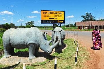 Ziwa Rhinoceros Sanctuary - Uganda