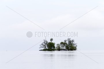 Mouth of the river in Salak South China Sea - Sarawak Borneo