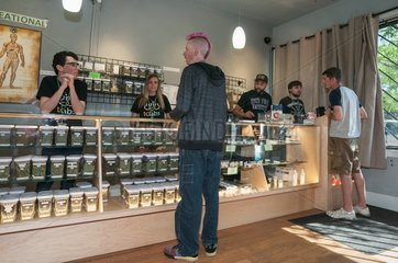 Selling medical and recreational marijuana at dispensary. Denver  CO  USA