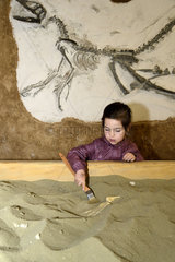 Girl digging sand and dinosaur skeleton - DinoZoo France