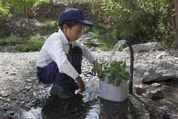 Schoolboy watering the plants in his school - Himalaya India