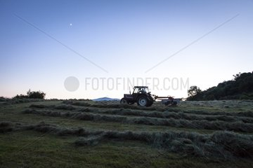 Mixing hay and tractor - Préalpes d Azur RNP France