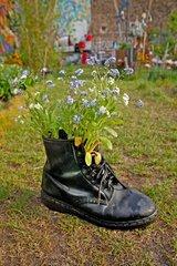 Flowers inside a shoe
