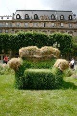 Grass armchair in Paris