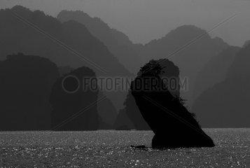 Karst islands of Halong Bay against-day Vietnam