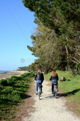 Cyclists on bike path - Island of Oleron France