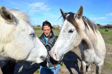 Horse psychologist and Camargue horses - Camargue France