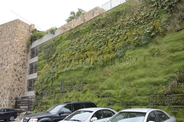 Green wall of a modern seaside resort - Chile