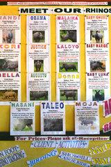 Rhinoceros pictures - Ziwa Rhinoceros Sanctuary Uganda