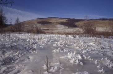 Steppe in winter in the area of Khentiy Mongolia