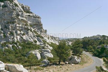 Landscape near Les Baux-de-Provence Bouches-du-Rhône France