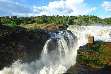 Murchison Falls - Murchison Falls NP Uganda