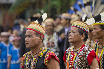 Men wearing feather hornbill during Parade Dayak - Indonesia