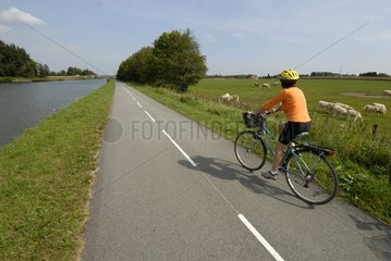 Cyclist on Véloroute along canal of Rhone to Rhine