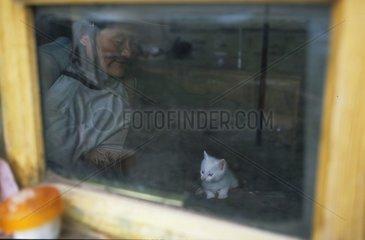 Chaton de gouttière et homme derrière une fenêtre Tibet