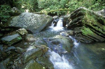 Cascade PN El Yunque Porto Rico