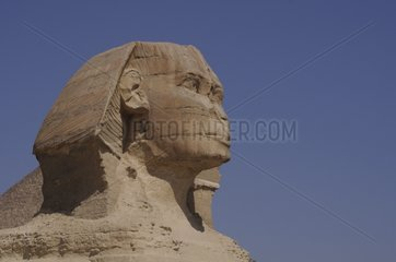 Great Sphinx in Giza plate Egypt