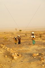 Dogon women transporting of the basins Mali