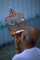 Man looking at a bird before buying it Hong-Kong China