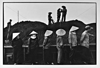 Loading of coal aboard barges Vietnam