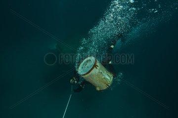 Divers potting down equipment - Aquarius Reef Base Florida