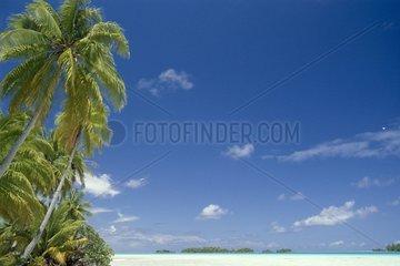 Idyllic beach French Polynesia